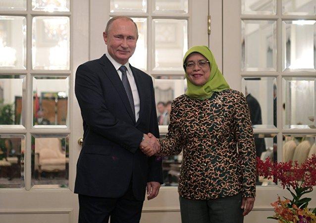 普京称他与新加坡总统的会谈富有成果