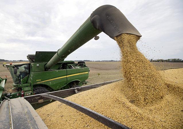 中国农业农村部长:中国粮食安全完全有保障