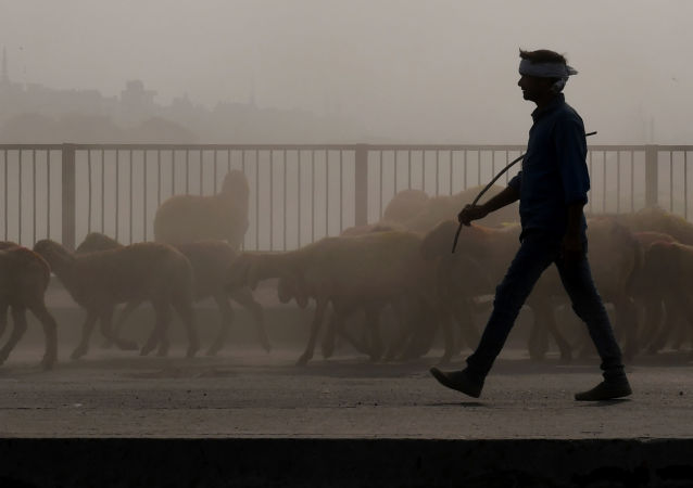 印度首都新德里因空气污染情况恶化宣布进入紧急状态
