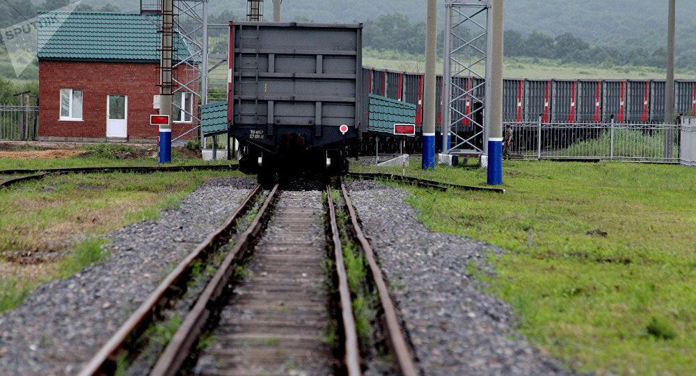 俄罗斯部分恢复通过铁路运输对华出口动物源性产品