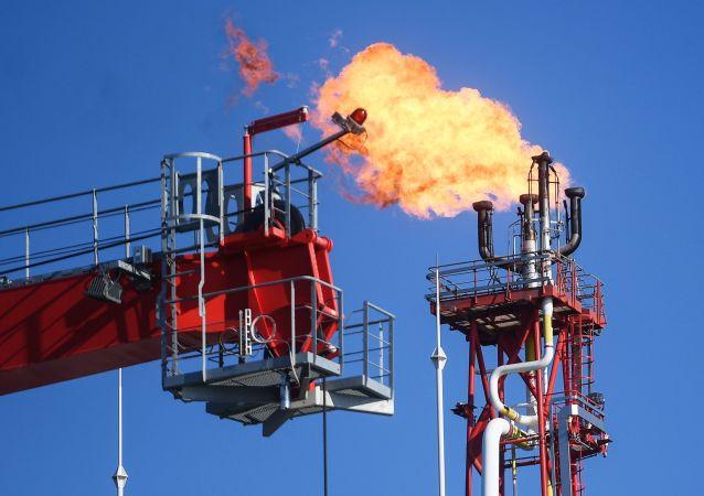 法国油价上涨引发抗议活动造成近50人受伤