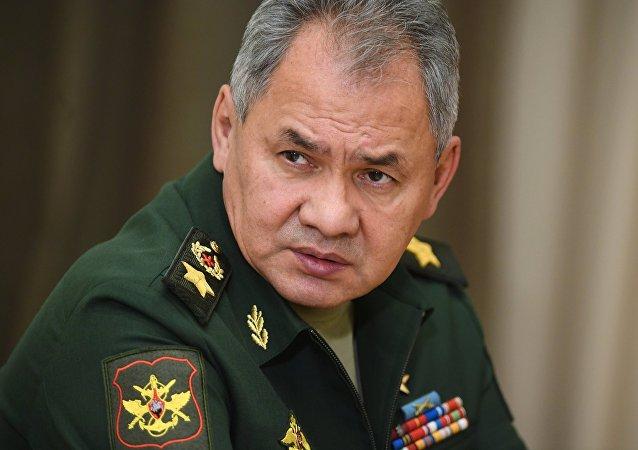 俄罗斯与土耳其防长讨论叙伊德利卜的非军事区