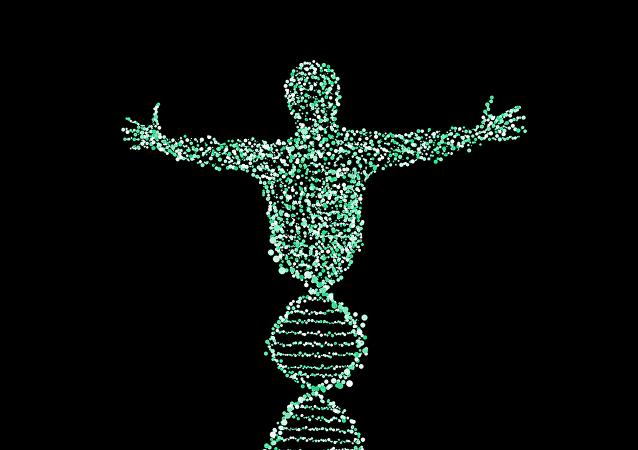 俄学者评论日本人兽杂交胚胎试验:携带兽类和人类基因的人将发生什么