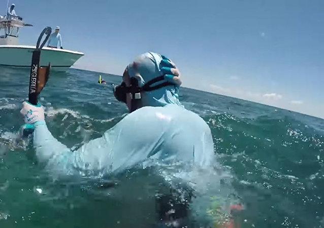鲨鱼咬了在巴哈马水下捕猎人的头部一口