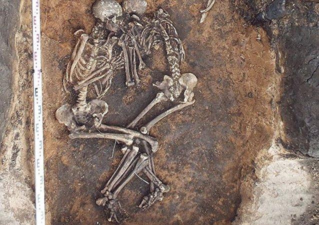 遗传学家:中世纪鼠疫起源于乌拉尔地区