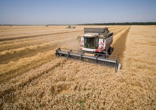 G20国家主张提高农业生产率