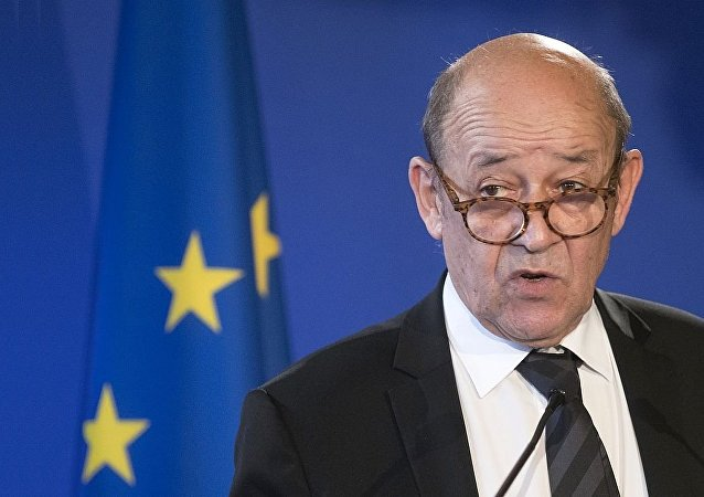 法国外交部长勒德里昂