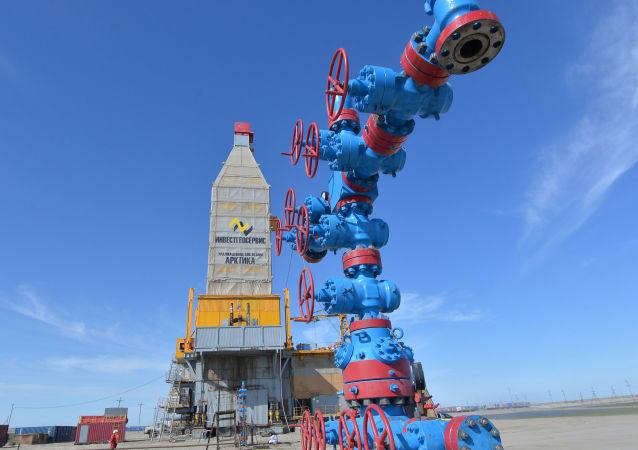 普京宣布启动哈拉萨维气田的全面开发