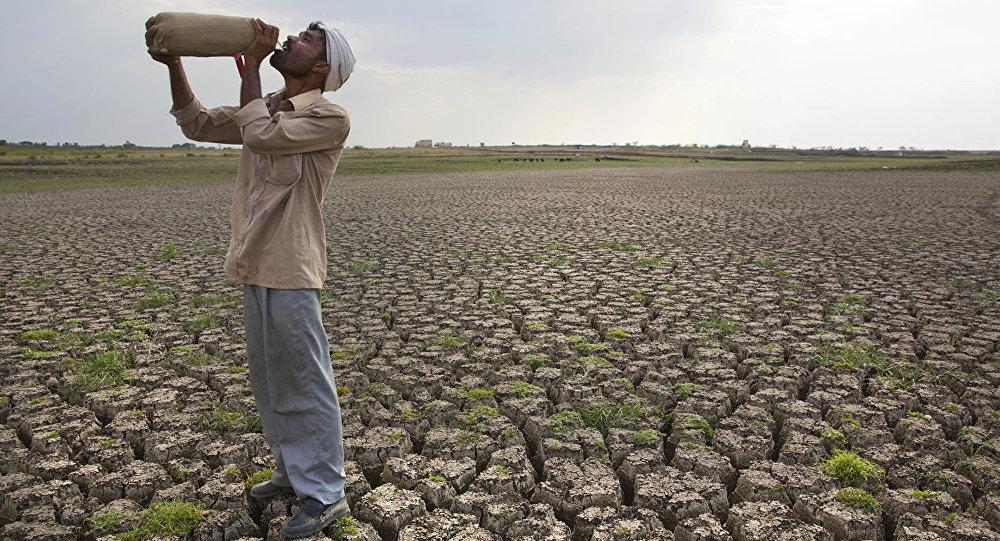 彭博社分析师:2019年将出现全球饥荒
