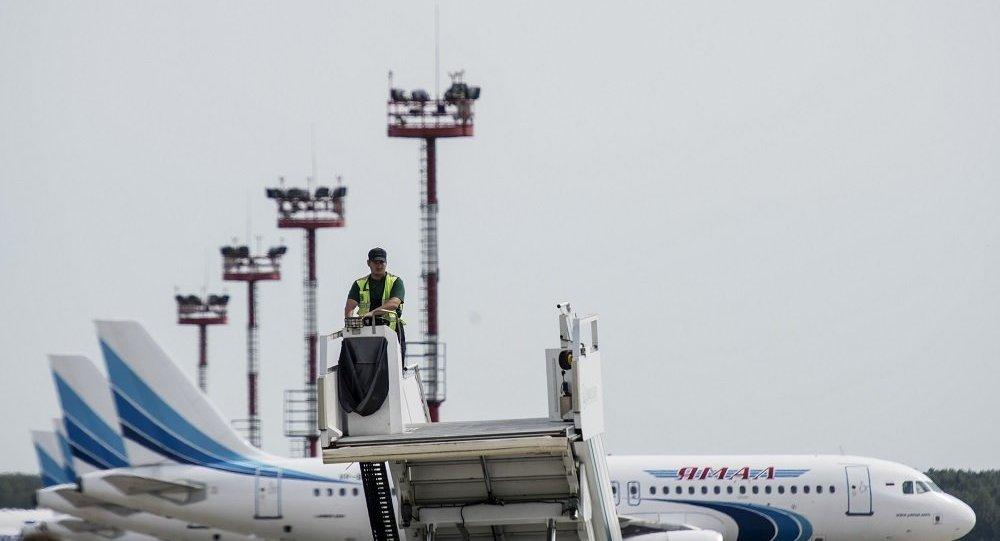 俄亚马尔航空客机遭遇鸟击后仍安全抵达目的机场
