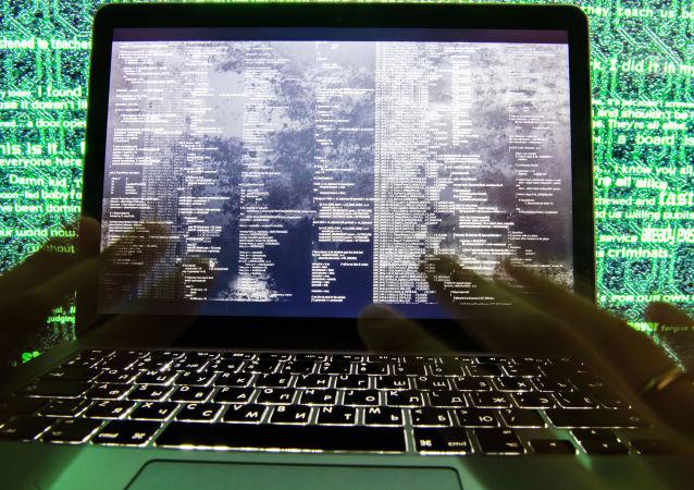 媒体:法国宪兵为85万余台被入侵电脑清除病毒