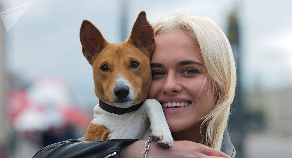 调查:三分之一的俄罗斯人收养流浪动物作宠物