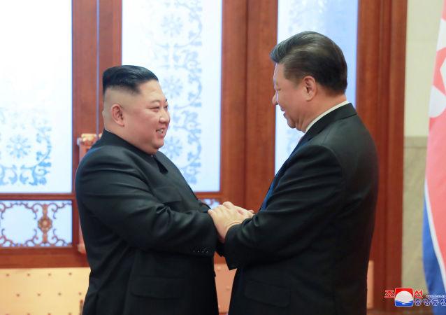 朝鲜副外相与俄驻朝大使讨论金正恩访华成果