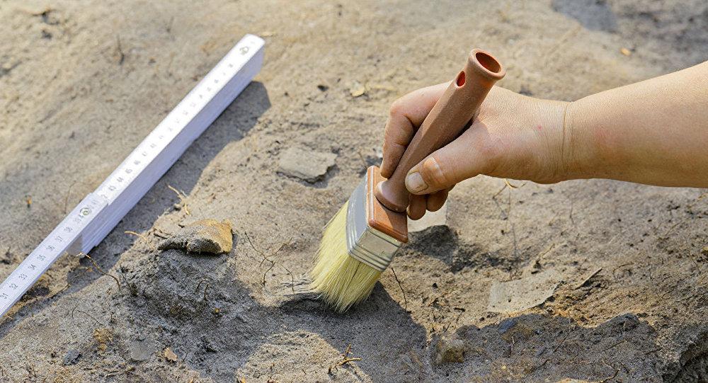 放射性碳素年代测定帮助区分出西伯利亚新的考古学文化