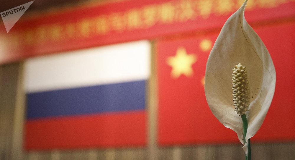 俄高度重视与中国在安全领域和抗击新冠病毒方面的合作