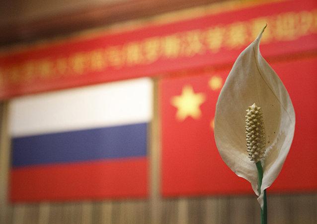 俄伏尔加河沿岸联邦区130多名大学生将前往中国参加俄中青年论坛