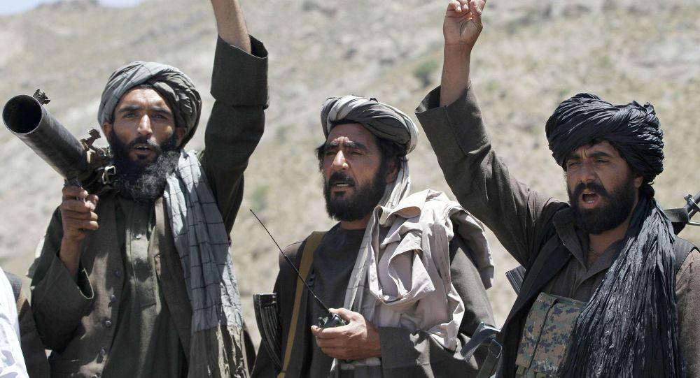 塔利班运动