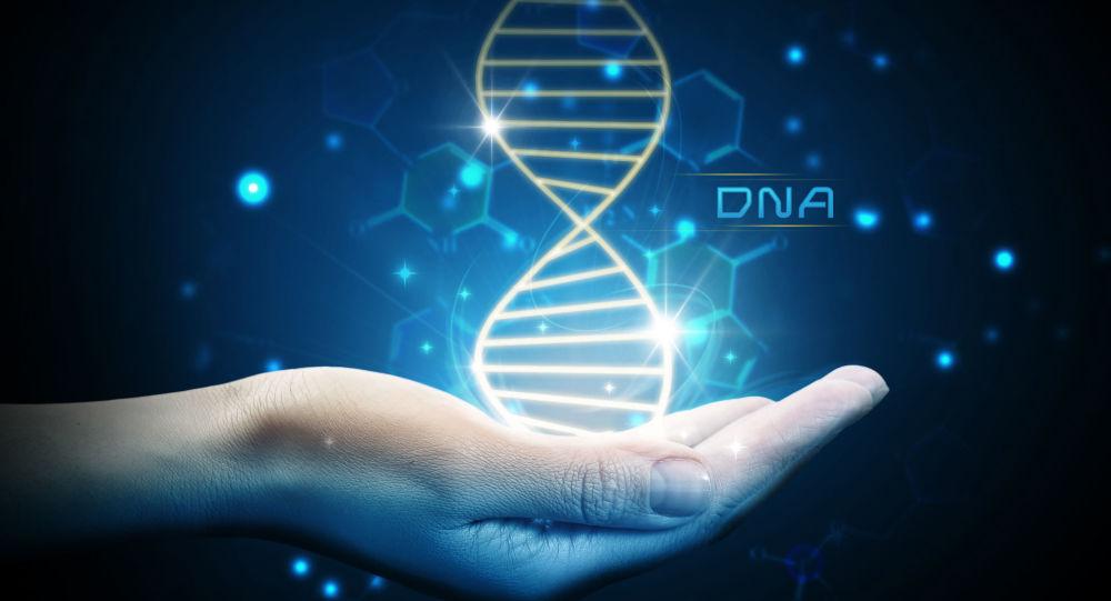 科学家发现Y染色体不仅影响生殖功能