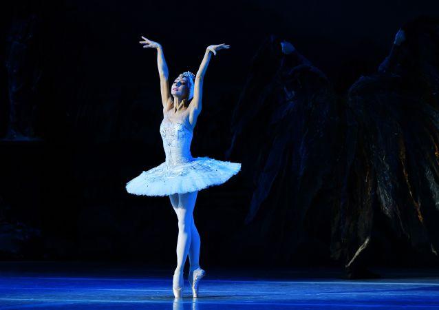中国最古老的芭蕾舞学校将在圣彼堡演出《天鹅湖》