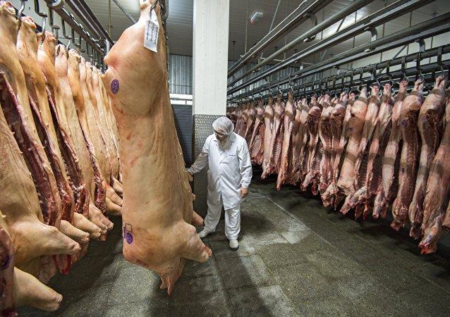 俄罗斯支持中国暂停进口加拿大猪肉