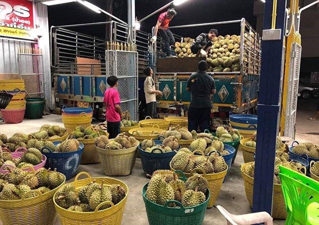 外媒:疫情未能阻挡中国对泰国榴莲需求的增长