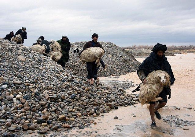 阿富汗暴雨成灾 已致约60人死亡140多人受伤