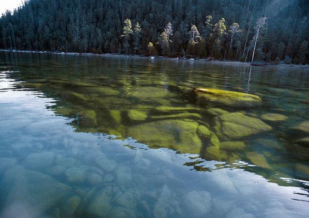 俄罗斯自然保护区