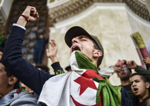 阿尔及利亚政治危机久悬不决或致激进伊斯兰主义势力增强
