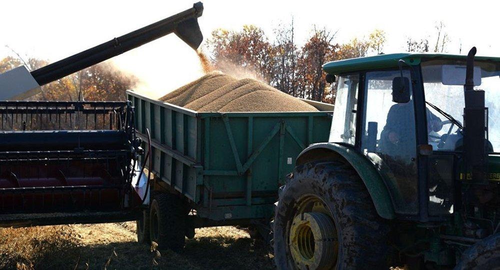 俄罗斯完全有能力成为向中国供应大豆的关键出口商