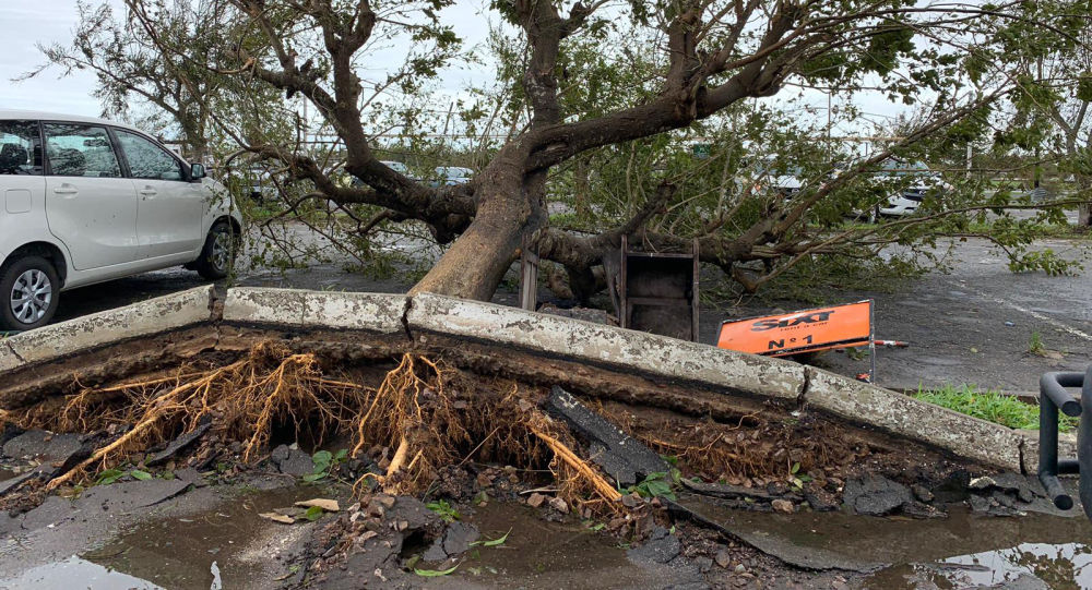 """联合国秘书长:气旋""""伊代""""致死700多人 死亡人数很有可能上升"""