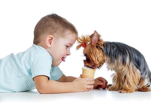 哪些犬种最适合孩子?