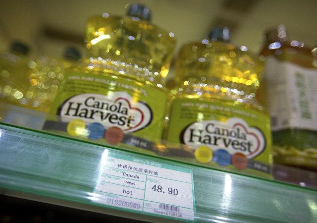 油菜籽或成中国与加拿大关系发展的障碍?