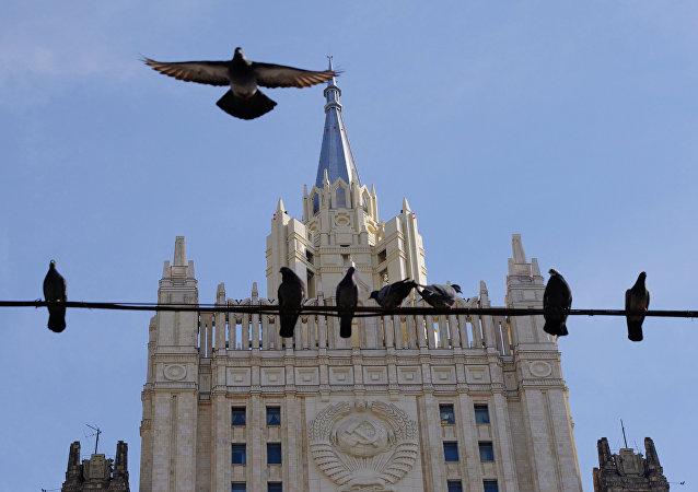 专家建议莫斯科人不要喂鸽子
