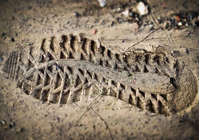 科学家称鞋子尺寸决定寿命