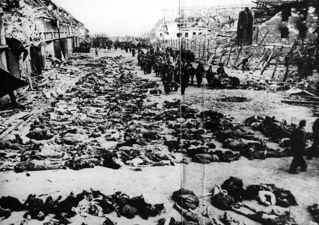 希特勒种族灭绝计划的首要目标是苏联