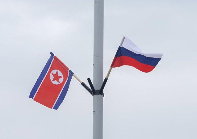 俄驻平壤大使馆:俄方正与朝鲜就使用俄新冠疫苗展开合作的问题进行磋商