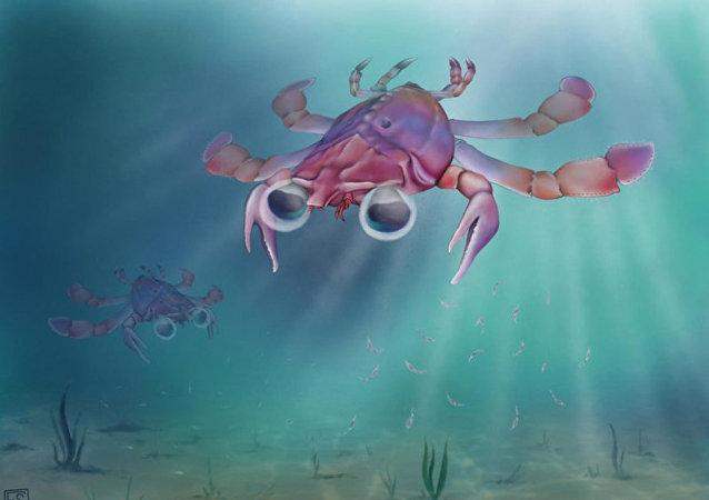 科学家们描述古代非同寻常的螃蟹