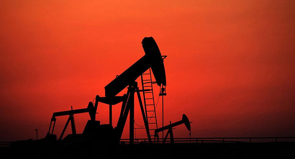 俄中高校将共同培养石油工程师