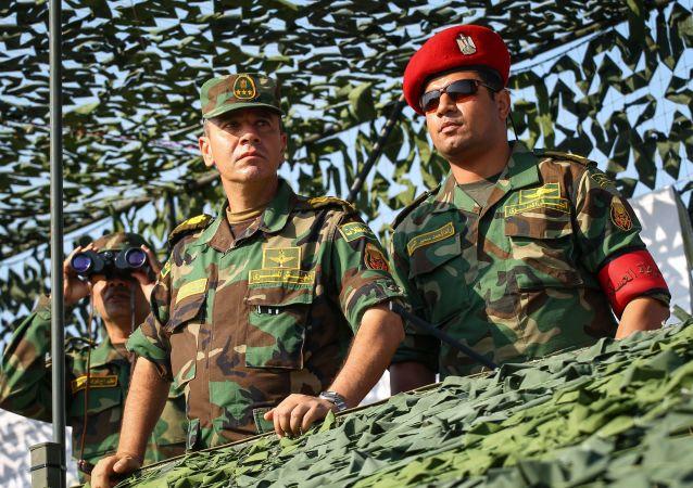 俄埃首次防空演习友谊之箭-2019在埃及举行
