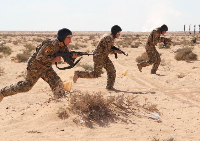 今年俄南部军区将同埃及、巴基斯坦及亚美尼亚举行军事演习