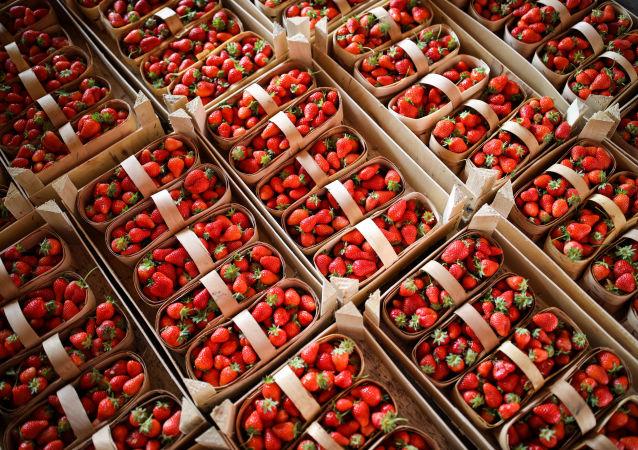 澳大利亚再现草莓藏针事件 警方着手调查