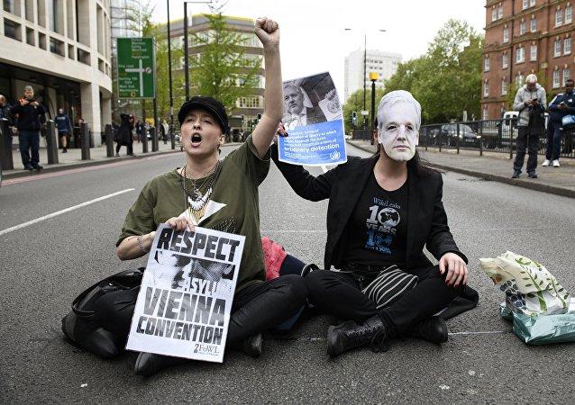 维基解密网站:今日支持阿桑奇的抗议活动将在一系列国家的大城市举行