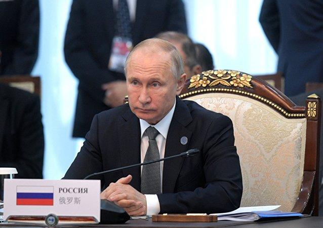 普京称反恐是上合首要任务