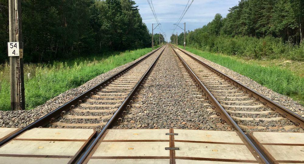 中国企业建议应推动中俄线路间班列往返均衡开行
