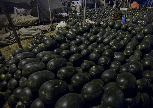 日本人花巨资购得黑西瓜