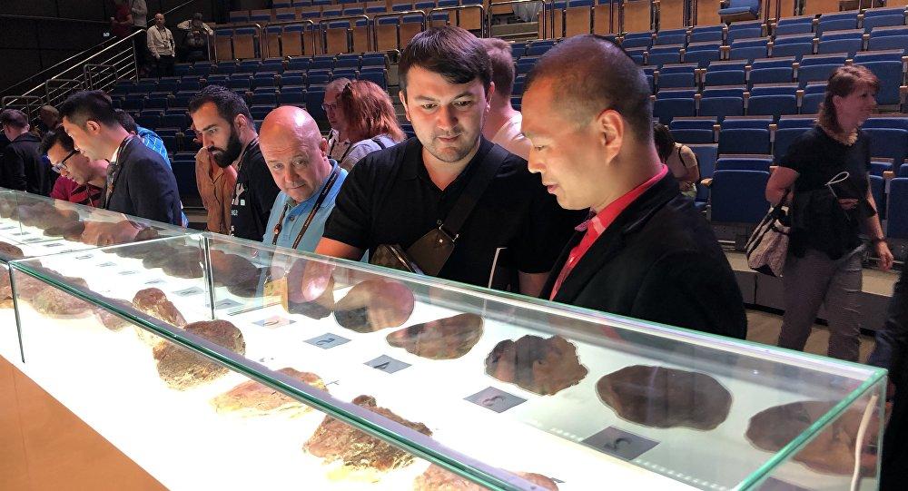 加里宁格勒最贵琥珀拍出 买主为香港人