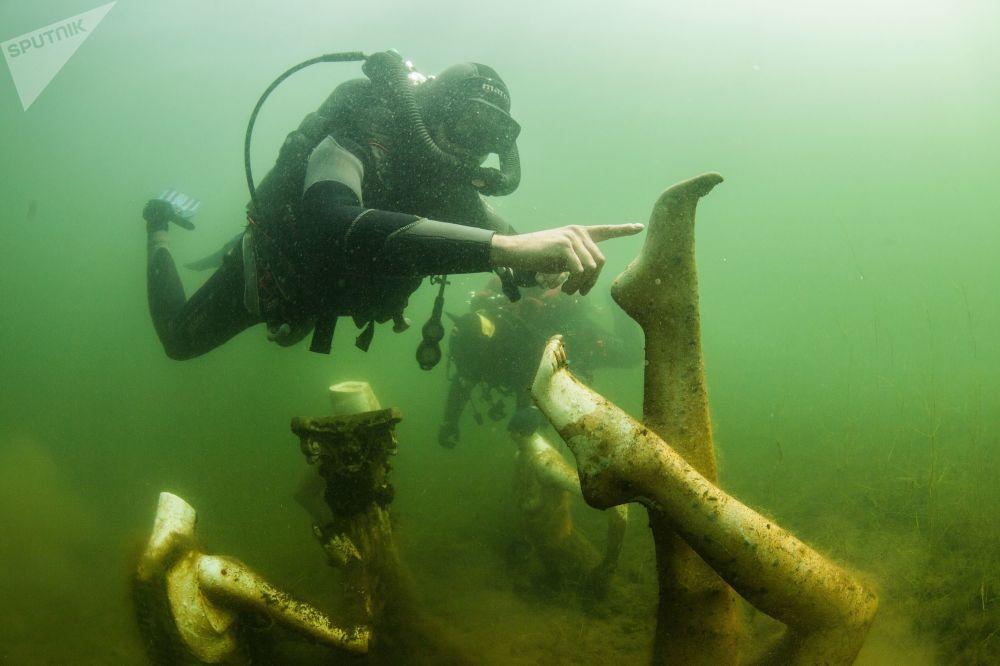 潜水员在特维尔州的水下潜泳