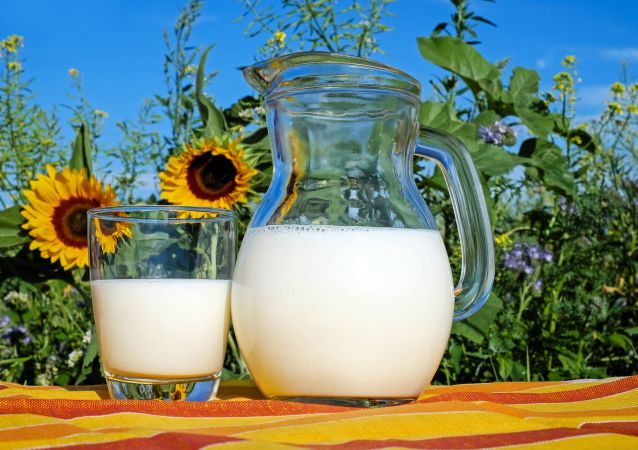 科学家称全脂牛奶减少孩子肥胖的风险