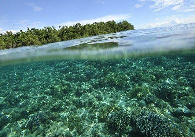 媒体:印尼因海岸侵蚀失去相当于雅加达面积的土地