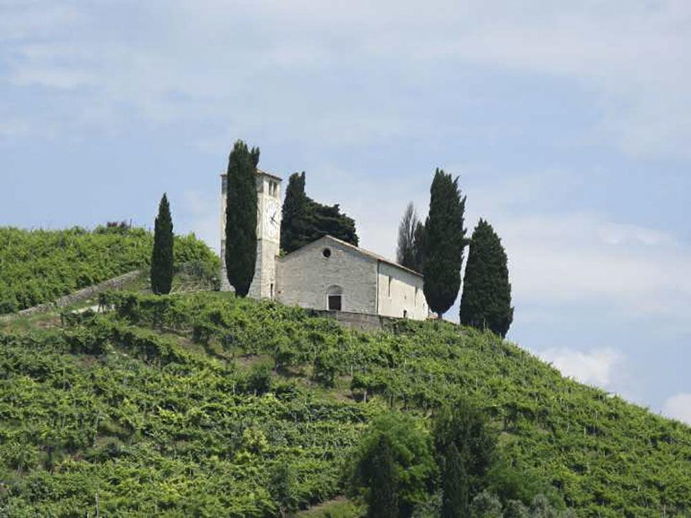 从普罗赛柯葡萄园看圣维吉尔教堂